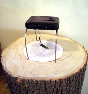 <b>Jeff Badger</b>, <i>Reinscribing Rings</i>, Found electronics, paper, graphite, and wood