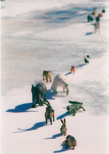 "Lucinda Bliss, <i>Exodus I</i>, 11"" x 8"", 35 mm prints on Ektacolor Standard Glossy paper, 2008"