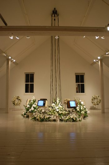 The Multiple Deaths of Willem Dafoe, Installation, The Center for Maine Contemporary Art, 2003